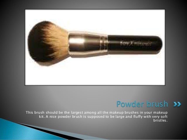 Makeup brushes that Every Women should own - 웹