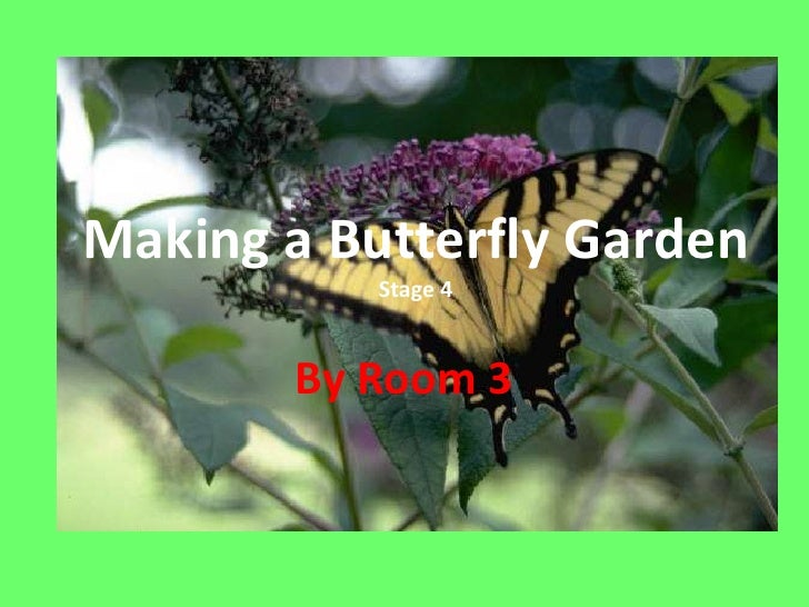 Making A Butterfly Garden