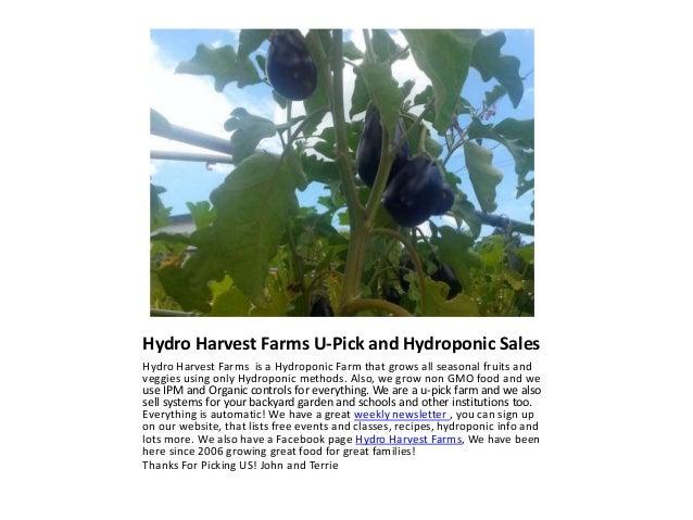 Eggplant Parmesan Easy Recipe all Farm Fresh Slide 2