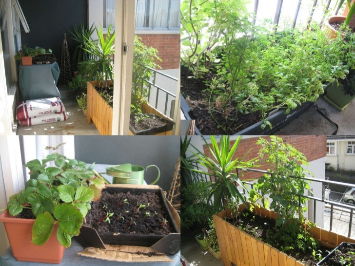 Urban pantry inspiration for small spaces workshop balcony garden - Balcony gardening in small spaces pict ...