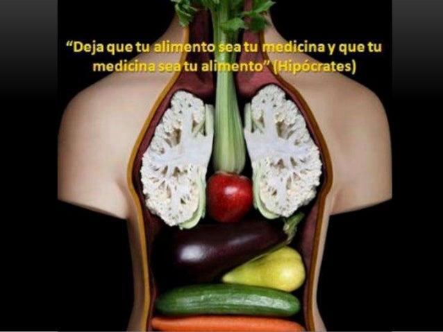 ALIMENTO = ENERGÍA  Los nutrientes proveerán al organismo vivo de los elementos que requiere para vivir