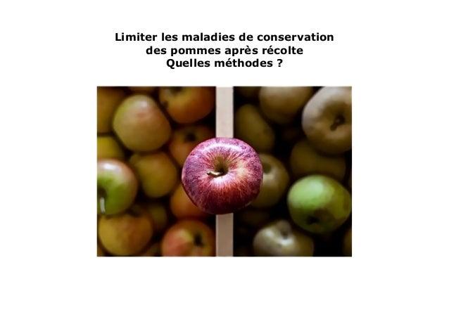 Limiter les maladies de conservationdes pommes après récolteQuelles méthodes ?