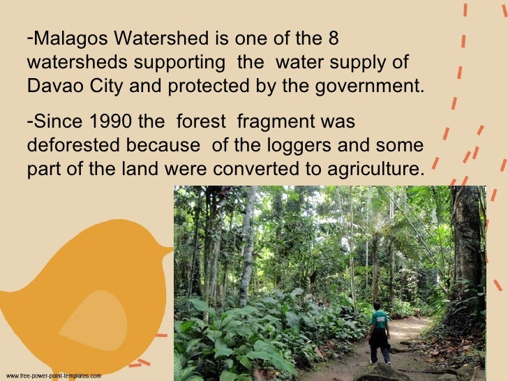 <ul><li>Malagos Watershed is one of the 8 watersheds supporting  the  water supply of Davao City and protected by the gove...