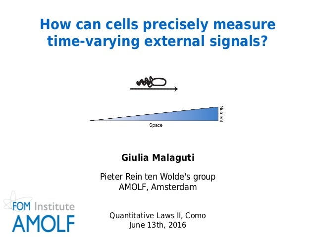 Giulia Malaguti Pieter Rein ten Wolde's group AMOLF, Amsterdam Quantitative Laws II, Como June 13th, 2016 How can cell...