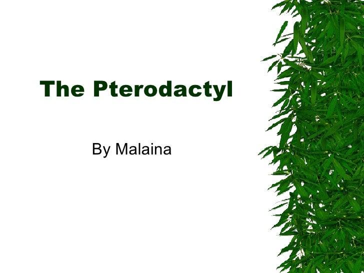 The Pterodactyl By Malaina