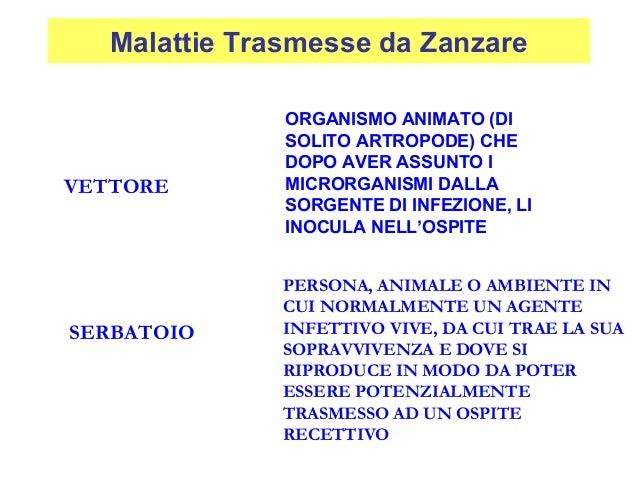 ORGANISMO ANIMATO (DI SOLITO ARTROPODE) CHE DOPO AVER ASSUNTO I MICRORGANISMI DALLA SORGENTE DI INFEZIONE, LI INOCULA NELL...
