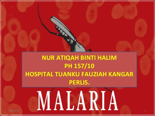 NUR ATIQAH BINTI HALIM PH 157/10 HOSPITAL TUANKU FAUZIAH KANGAR PERLIS. 06/12/14 1
