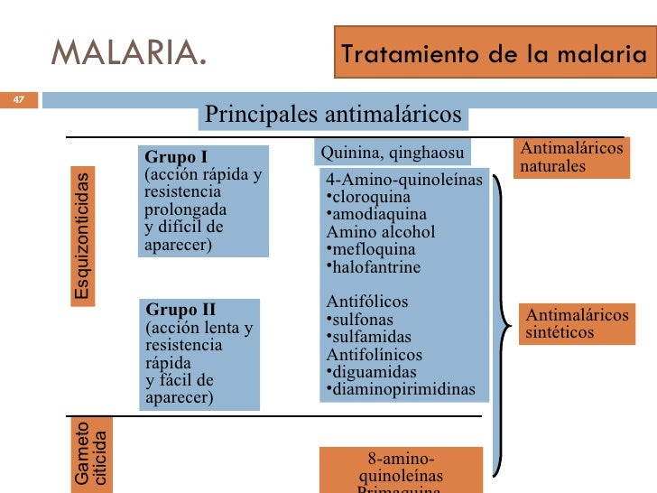 Como es pasada la prueba pericial al alcoholismo