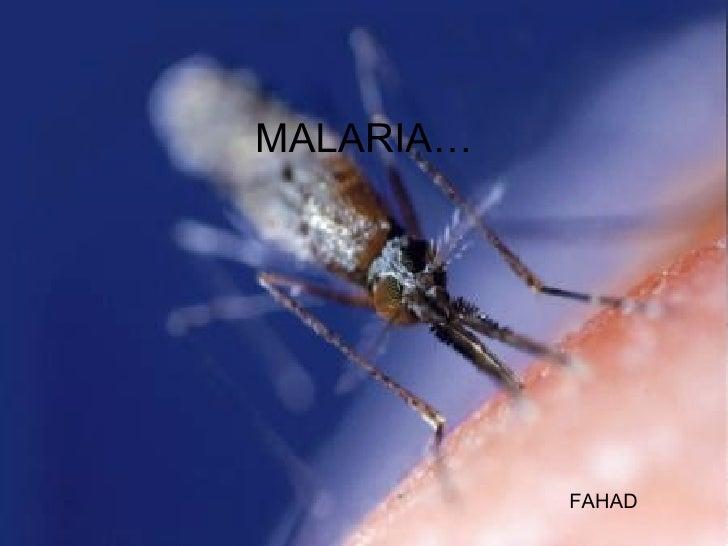 MALARIA…   FAHAD