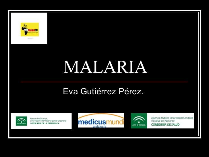 MALARIA Eva Gutiérrez Pérez.