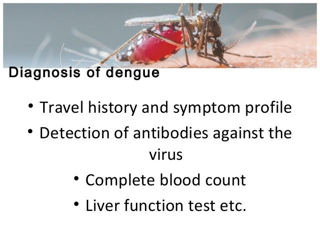 dengue fever and malaria in thrombocytopenic patients Webmd explains dengue fever, a painful, debilitating, mosquito-borne disease that is common in the tropics.