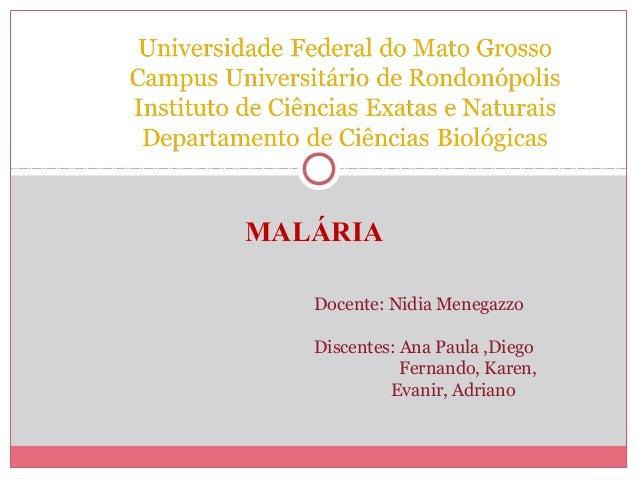 MALÁRIA Docente: Nidia Menegazzo Discentes: Ana Paula ,Diego Fernando, Karen, Evanir, Adriano