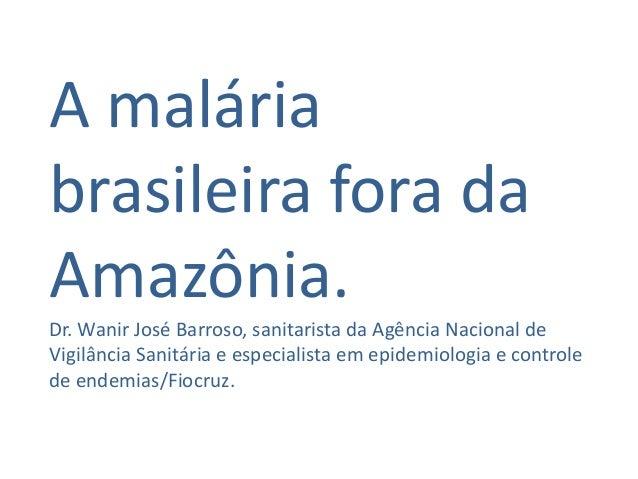 A malária brasileira fora da Amazônia. Dr. Wanir José Barroso, sanitarista da Agência Nacional de Vigilância Sanitária e e...