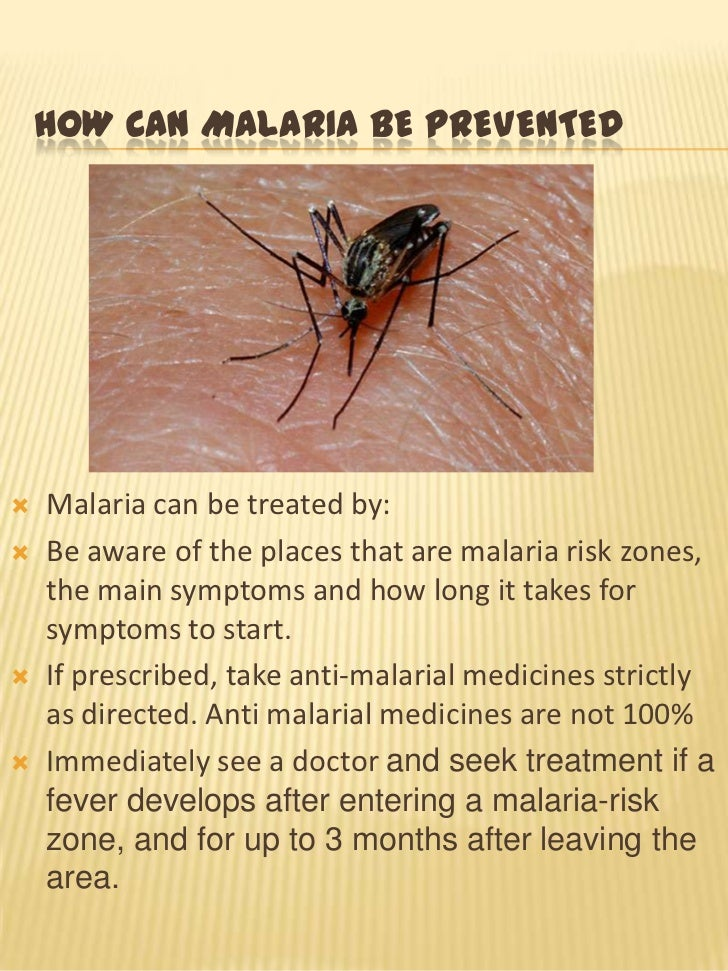 Essay on malaria