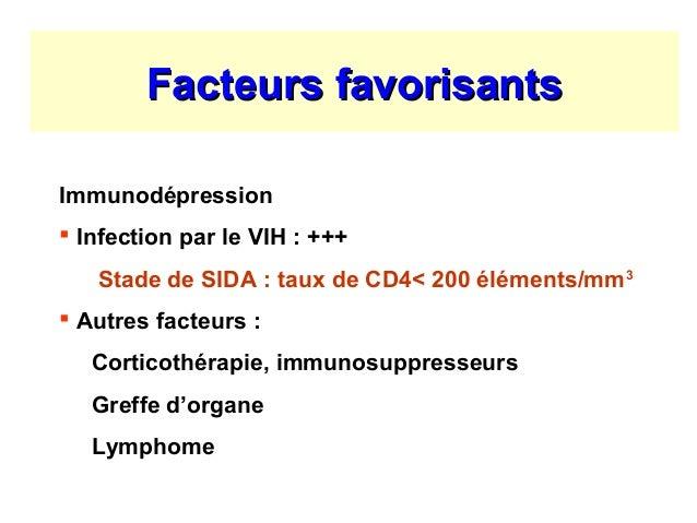 Malasssezioses cryptococcose