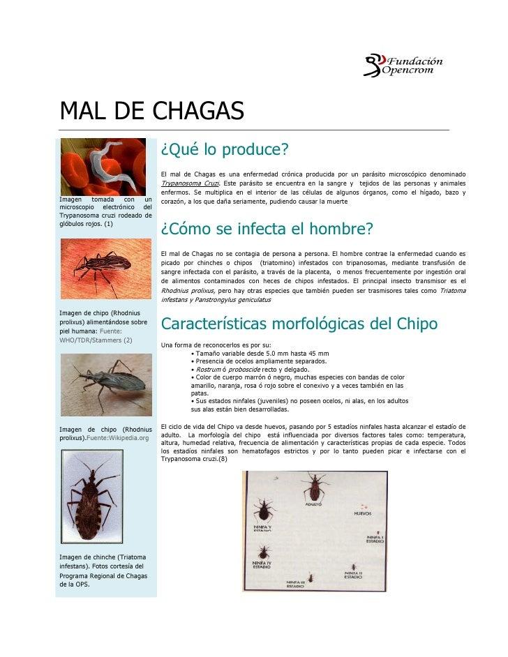 MAL DE CHAGAS                                  ¿Qué lo produce?                                  El mal de Chagas es una e...