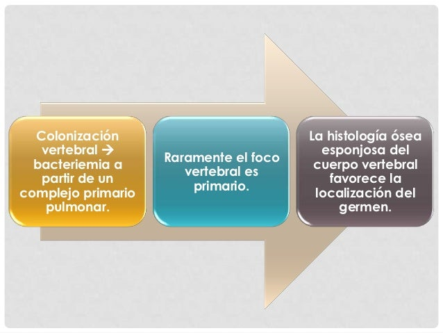 Patogenia  El bacilo    Compromete        Infecta el        Tiende a    Formallega por la     primero el   arteria        ...