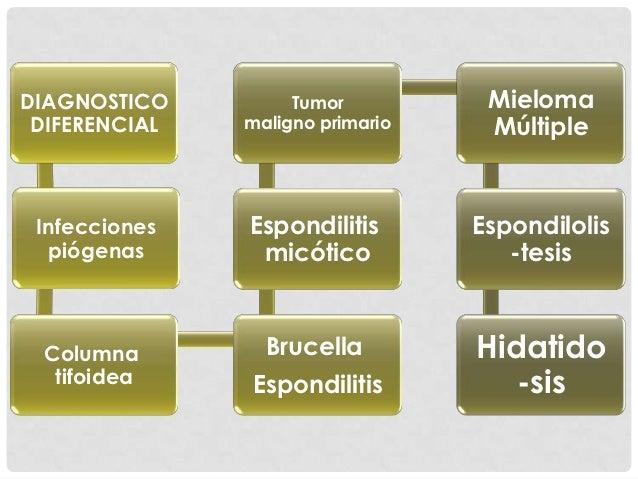 TRATAMIENTO: QUIRÚRGICO                            RX lateral posoperatoria, muestra injertoRX lateral preoperatoria   aut...