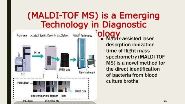 N Molecular Mass MALDI-TOF in Clinical ...