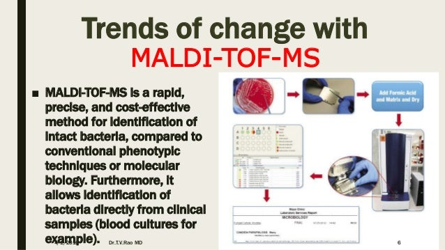MALDI-TOF in Clinical Microbiology our vision to future technology