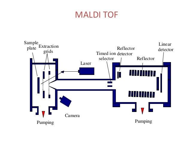 Maldi Tof Ppt Adnya