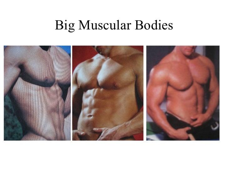 Body male husky type Best Men's