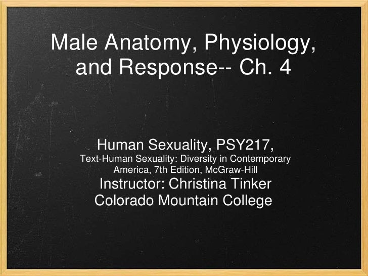 Male Anatomy, Physiology, and Response-- Ch. 4<br /><br /><br />Human Sexuality, PSY217, <br />Text-Human Sexuality: Div...