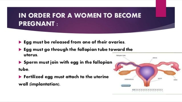 IN ORDER FOR A WOMEN TO BECOME PREGNANT :  Egg must be released from one of their ovaries.  Egg must go through the fall...