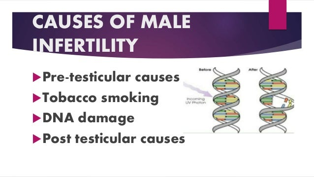 CAUSES OF MALE INFERTILITY Pre-testicular causes Tobacco smoking DNA damage Post testicular causes