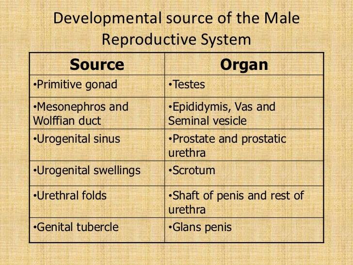 Male infertility Done By Unnikrishnan S