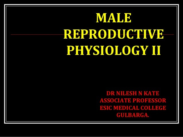 MALE REPRODUCTIVE PHYSIOLOGY II Dr. Nilesh Kate (MBBS. MD) DR NILESH N KATE ASSOCIATE PROFESSOR ESIC MEDICAL COLLEGE GULBA...
