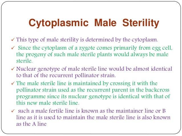 what is cytoplasmic male sterility