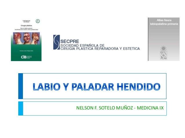 NELSON F. SOTELO MUÑOZ - MEDICINA IX
