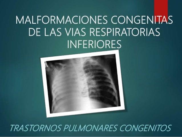MALFORMACIONES CONGENITAS DE LAS VIAS RESPIRATORIAS INFERIORES TRASTORNOS PULMONARES CONGENITOS