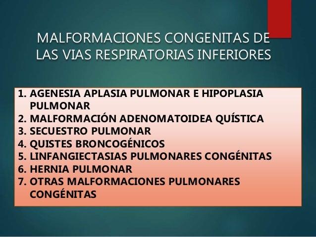 No se puede determinar una diferenciación etiológica, patogénica o clínica entre agenesia y aplasia y deberían considerars...