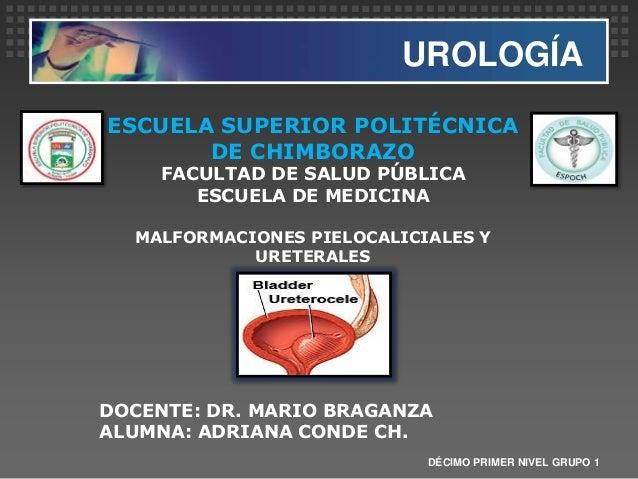 UROLOGÍA DÉCIMO PRIMER NIVEL GRUPO 1 ESCUELA SUPERIOR POLITÉCNICA DE CHIMBORAZO FACULTAD DE SALUD PÚBLICA ESCUELA DE MEDIC...