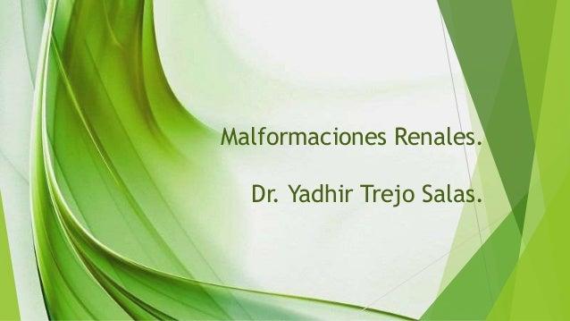 Malformaciones Renales. Dr. Yadhir Trejo Salas.