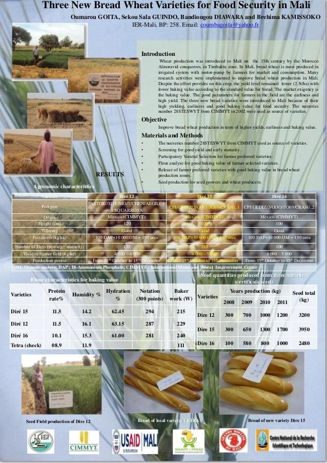 Three New Bread Wheat Varieties for Food Security in Mali                                  Oumarou GOITA, Sekou Sala GUIND...