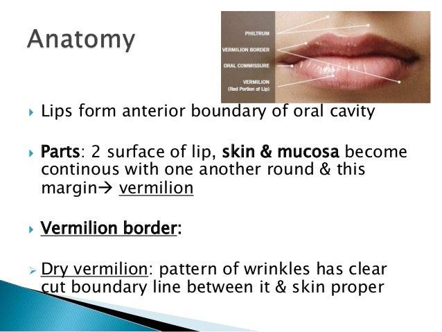 Malignancy of lip