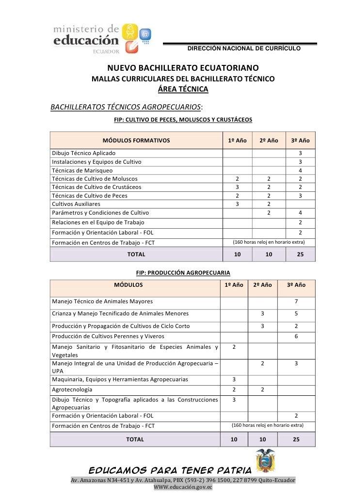 DIRECCIÓN NACIONAL DE CURRÍCULO                    NUEVO BACHILLERATO ECUATORIANO              MALLAS CURRICULARES DEL BAC...