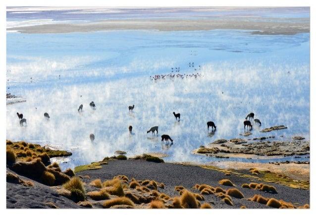 """Exposition """"Paysages Abstraits empruntés à l'Altiplano Bolivien"""" à la Maison de l'Amérique Latine en Rhône-Alpes Auvergne"""