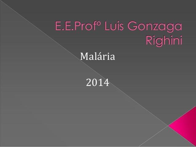 E.E.Profº Luis Gonzaga Righini Malária 2014