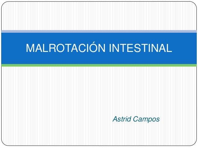 Astrid Campos MALROTACIÓN INTESTINAL