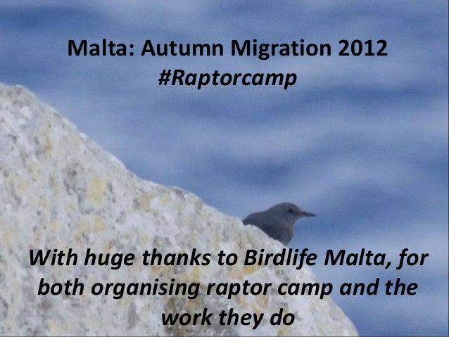 Malta: Autumn Migration 2012           #RaptorcampWith huge thanks to Birdlife Malta, forboth organising raptor camp and t...