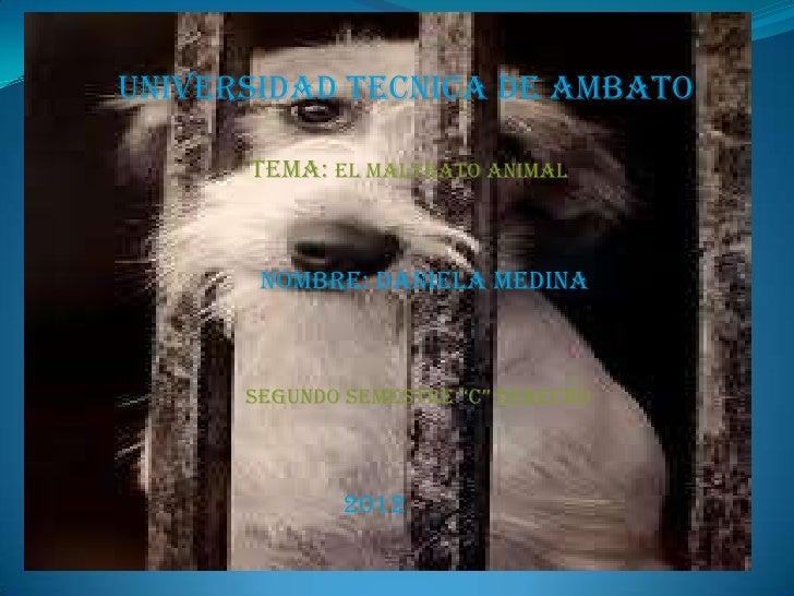 """UNIVERSIDAD TECNICA DE AMBATO      TEMA: EL MALTRATO ANIMAL       NOMBRE: DANIELA MEDINA      SEGUNDO SEMESTRE """"C"""" DERECHO..."""