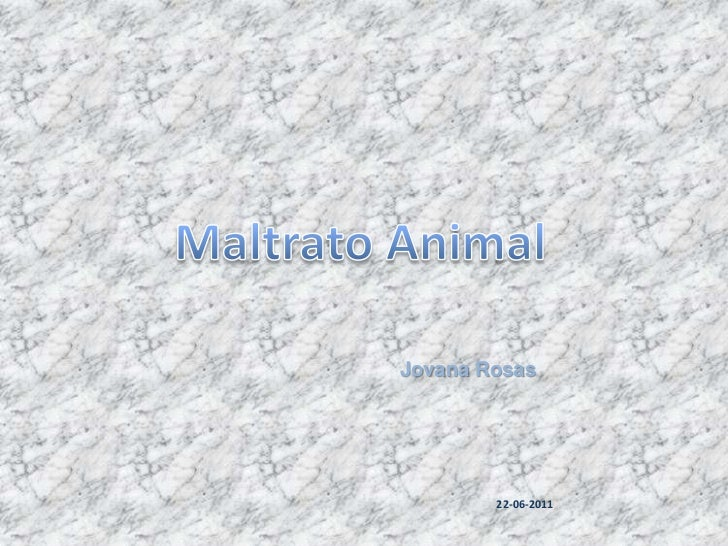 Maltrato Animal<br />Jovana Rosas<br />21-06-2011<br />