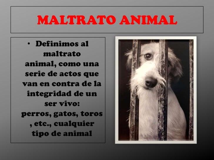 MALTRATO ANIMAL  • Definimos al       maltrato animal, como una serie de actos quevan en contra de la integridad de un    ...