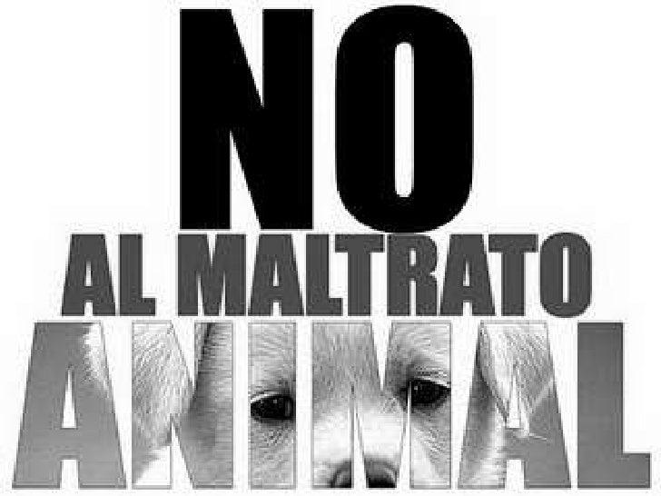 gama de comportamientos que causan dolor    innecesario,sufrimiento o estrésal animal, que van  desde la meranegligencia e...