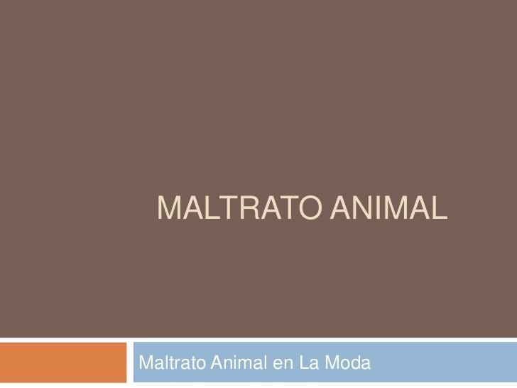 MALTRATO ANIMALMaltrato Animal en La Moda