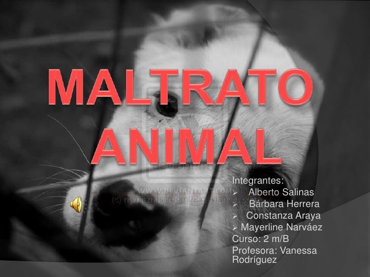 MALTRATO ANIMAL<br />Integrantes: <br /><ul><li>    Alberto Salinas